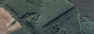 aerofotogrametria alta resolução