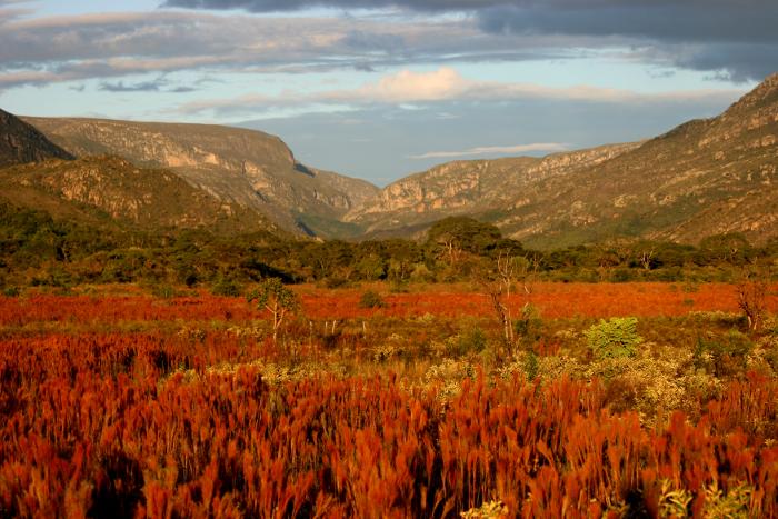 IEF de MG aprovou a doação de terras para o ICMBIO como compensação ambiental