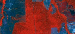 Imagem de satélite RapidEye