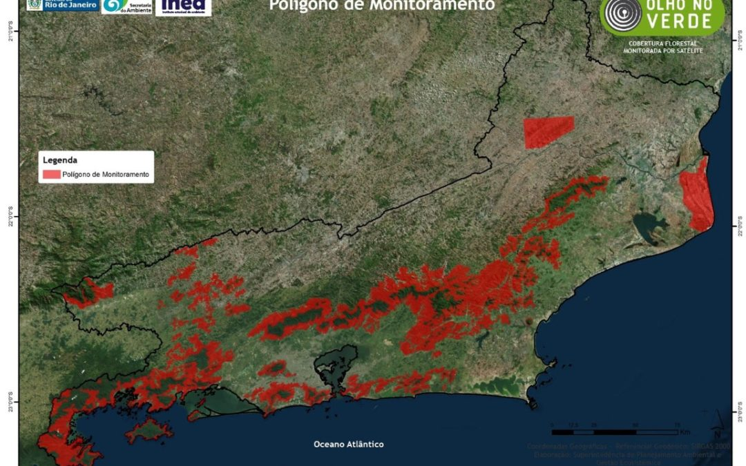 Rio lança o projeto Olho no Verde para combater desmatamento na Mata Atlântica