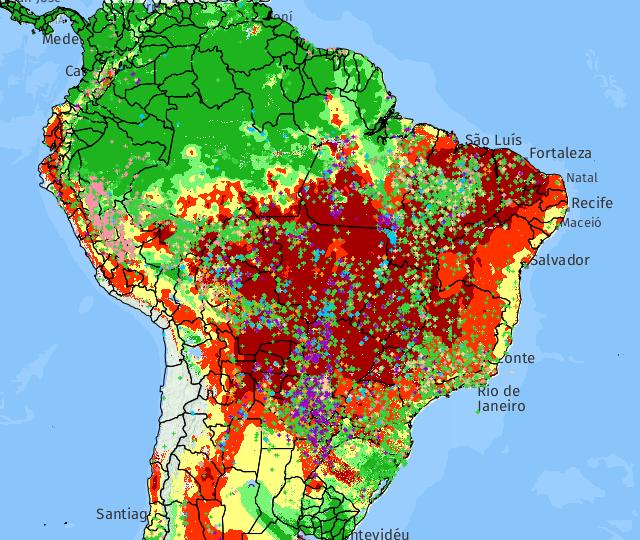 Focos de incêndio aumentam no Brasil