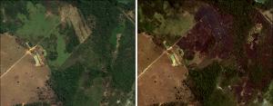 Monitoramento por Imagens de Satélite