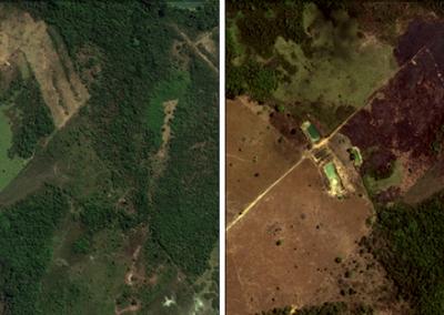 Monitoramento por Imagens de Satélite - Áreas de queimadas - Carajás, PA