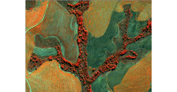 Topografia e Geodésia