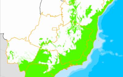 Desmatamento da Mata Atlântica é o menor registrado desde 1985