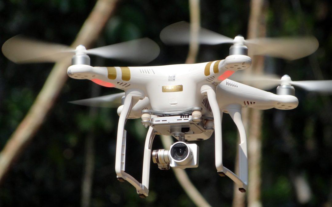 Concessões florestais serão monitoradas por drones