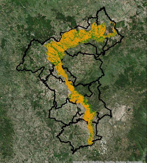 Área com floresta nativa cresce na Escarpa Devoniana no Paraná