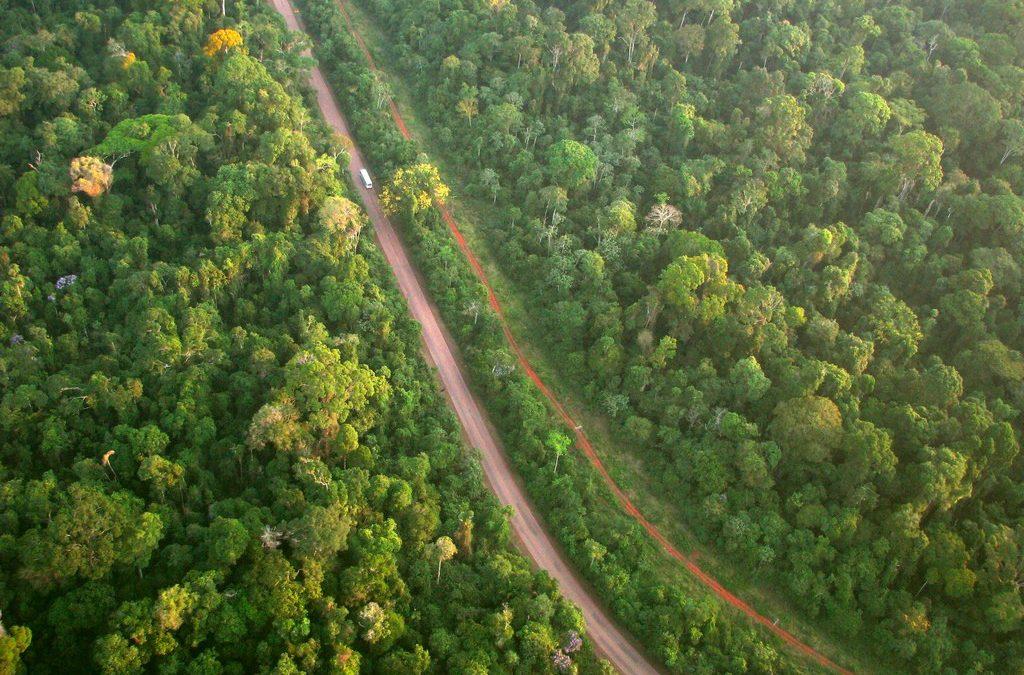Conversão de multas em serviços ambientais: como funciona?