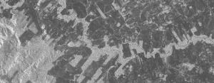 PALSAR imagem de radar