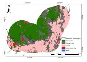amazônia mapeamento