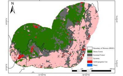Estudo revela que o bioma da Amazônia é maior que os limites oficiais